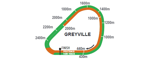 Greyville_2021-06-01.png
